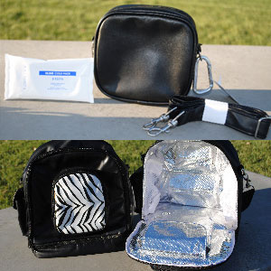 Insulated Back Pack